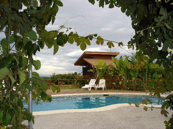 Hotel El Silencio del Campo: Pool