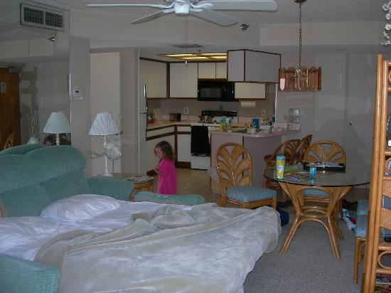 Gulf Beach Resort: hideaway bed looking into kitchen
