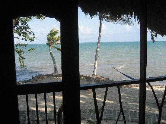 Turtle Inn: View from inside our villa