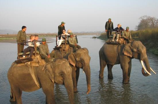 치트완 국립공원 사진