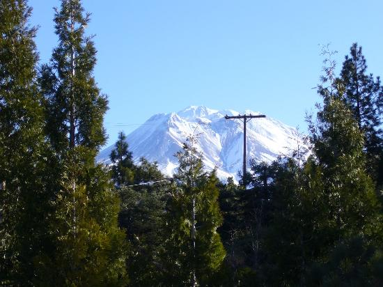 Weed, CA: Lovely Mt. Shasta