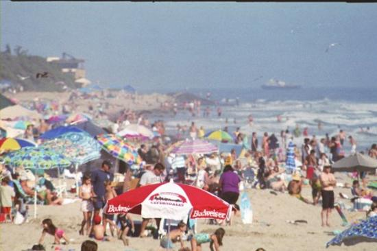Carpinteria Beach In Summer