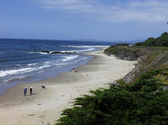 Carpinteria's Tar Pits Beach