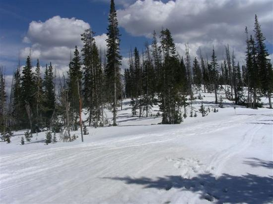Cedar Breaks National Monument: Snowmobile track