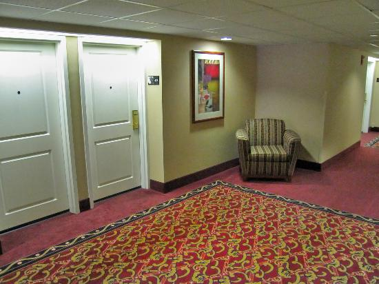 Hampton Inn Brookfield : 4th Floor Hallway