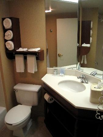 Hampton Inn Brookfield: Room 439 Bathroom