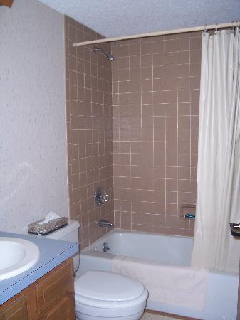 Oakmont Resort: 2nd bath super clean