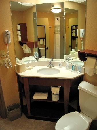Hampton Inn Minneapolis / Eagan: Room 126 beautiful new bathroom
