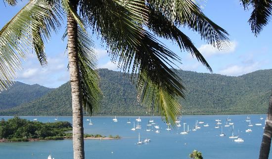 Shute Harbour, Australien: Room view