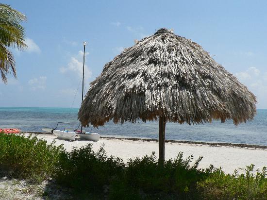 St. George's Caye Resort: Beachside