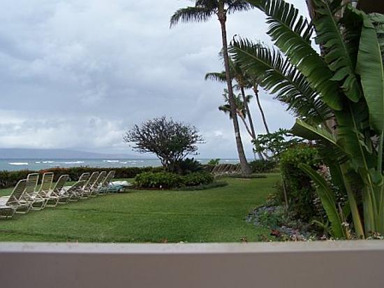 Royal Kahana: View from the lawn