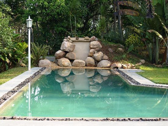 Horathapola Estate: ...the pool...