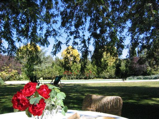 Casa Glebinias: Breakfast on the lawn.