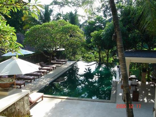 Komaneka at Monkey Forest: Komaneka Resort swimming pool