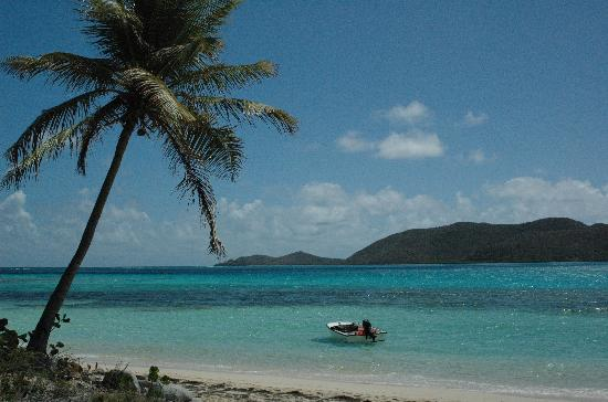 Mosquito Island BVI - Picture of Virgin Gorda, British Virgin Islands - TripA...