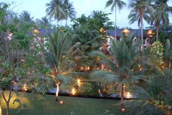 Anantara Bophut Koh Samui Resort : Le jardin depuis la chambre au couché du soleil.