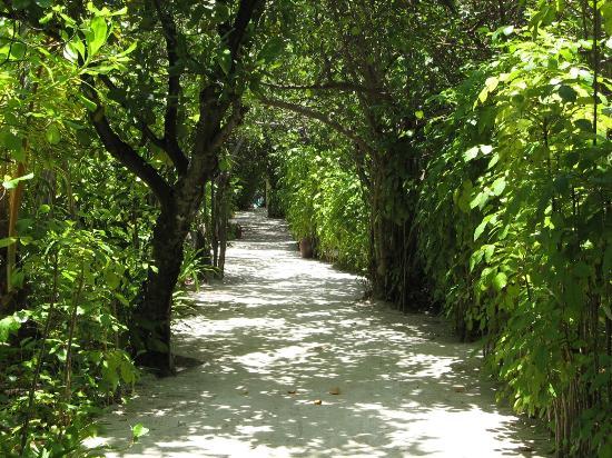 Mirihi Island Resort: Mirihi High Street