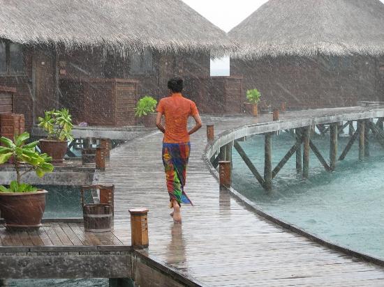 Mirihi Island Resort: A rainy day on Mirihi