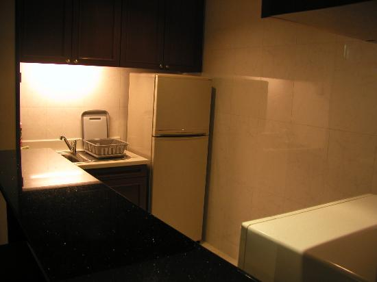 Treetops Executive Residences Singapore: kitchen