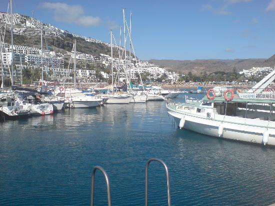 Cabau Cala Nova : one of the harbours