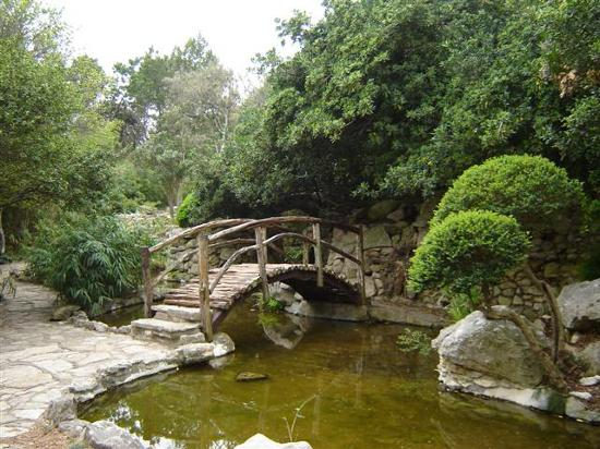 Zilker Botanical Garden Photo