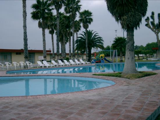 Las Palmas Midway Inn: Swimming pool area