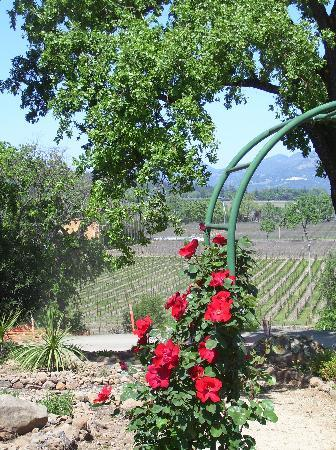 Embassy Suites by Hilton Napa Valley: Pic of Napa from the Trinchero Family Winery
