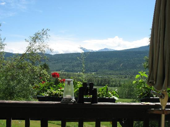 Timber Inn: View from the Dining Room Deck