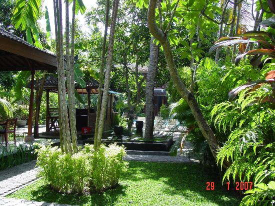 Bumi Ayu Bungalows: a glimpse of the pool and bar in the lush gardens