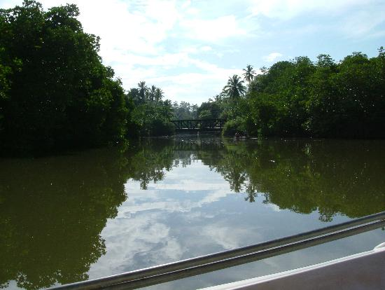 Heritance Ahungalla: Stunning view on river safari