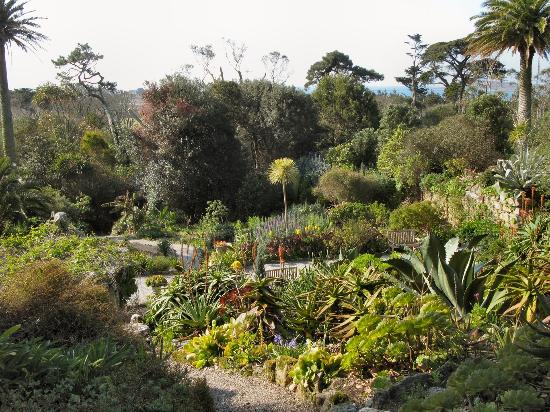 Tresco Abbey Garden & Valhalla Collection: The views are almost unique1