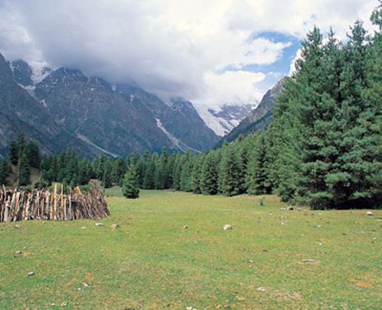 Gilgit, Pakistan: Bagrote