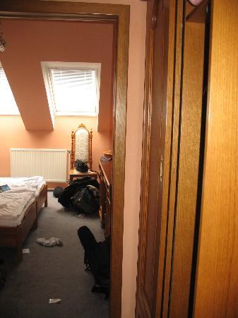 Hotel Vysehrad: Hallway/entrance into the room.