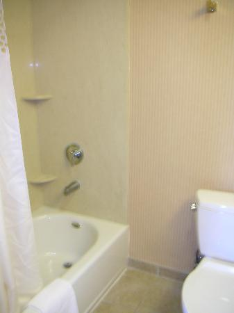 Hampton Inn & Suites Sacramento-Airport-Natomas: Bathroom