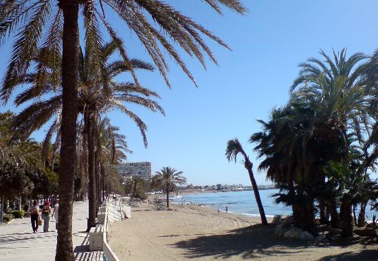 Hotel & Spa Benalmádena Palace: Another view of Marbella beach: well worth the drive
