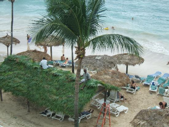 Beaches Ocho Rios Resort & Golf Club: The beach.