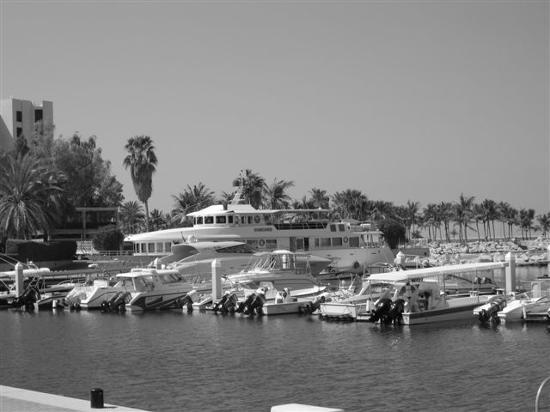 JA Jebel Ali Beach Hotel : hotel and marina