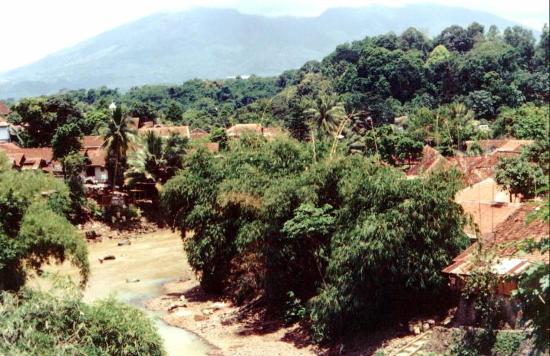 Bogor view