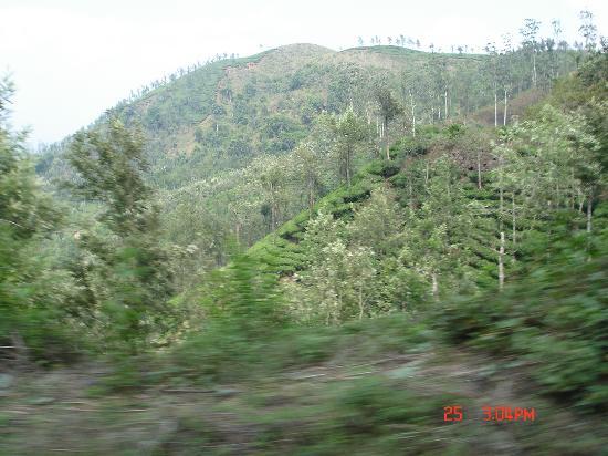 Bilde fra Tamil Nadu