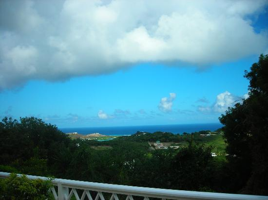 Villa Greenleaf: Our view off our private terrace.
