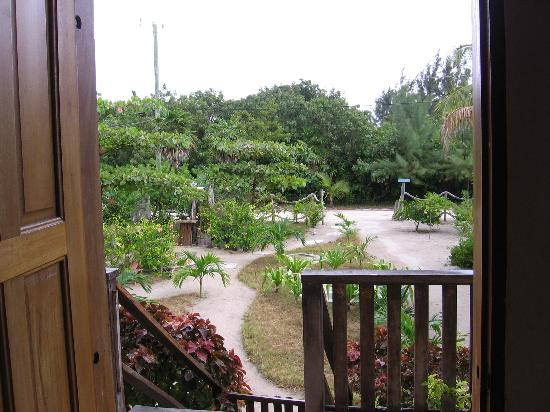 View of gardens from our apartment at Oasi