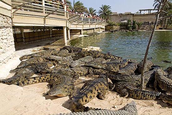 Djerba Explore ภาพถ่าย