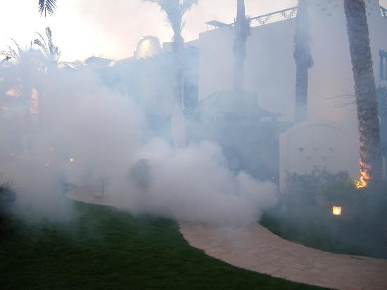 Falcon Hills Hotel: Nightly de-fumigation
