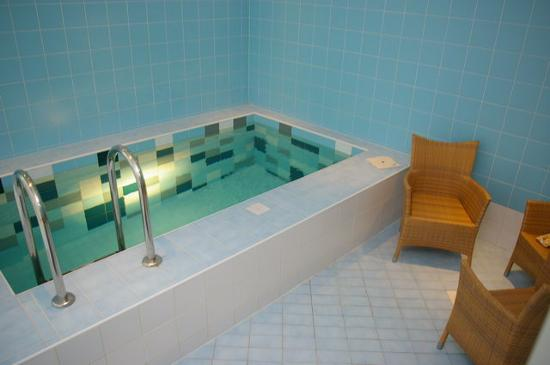 Kongo Hotel: Saunas pool