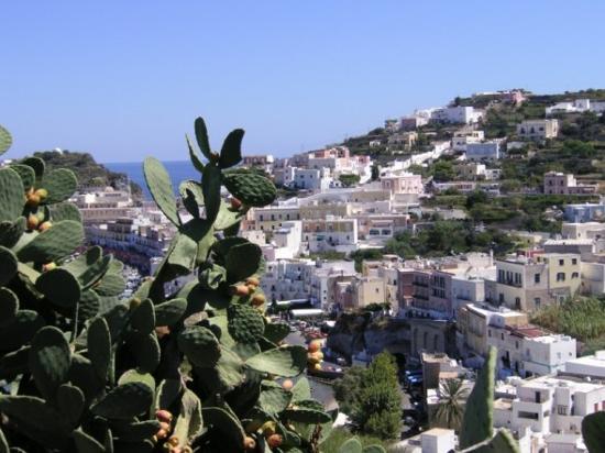 Ponza Island, إيطاليا: ponza