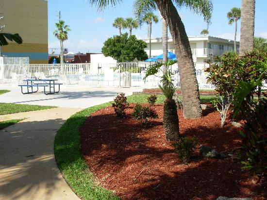 Motel 6 Cocoa Beach: Beautiful Grounds