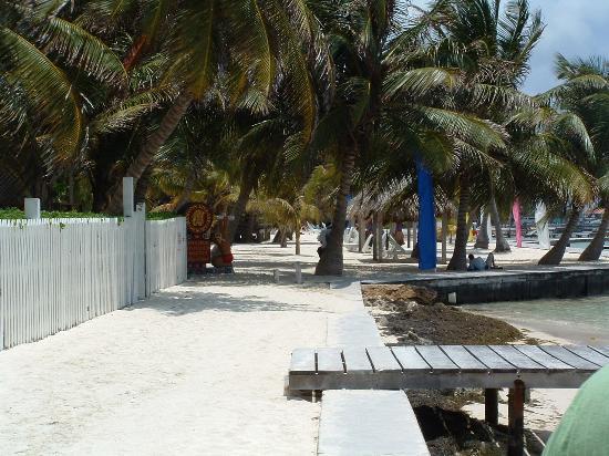 Coconuts Caribbean Resort: Front of Ramon's Village Resort