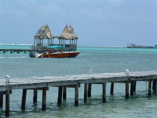 Coconuts Caribbean Resort: Ocean Views