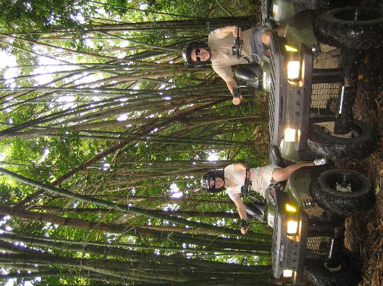ATV Paradise Tours: Rainforest