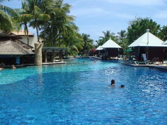 Hard Rock Hotel Bali : Pool